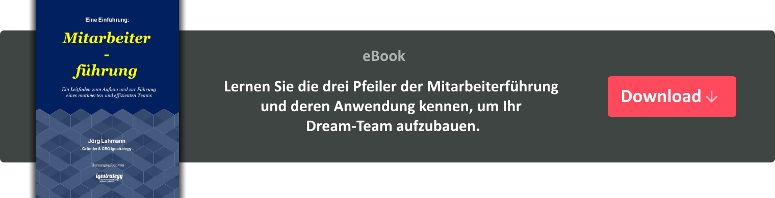 eBook Mitarbeiterführung - igostrategy